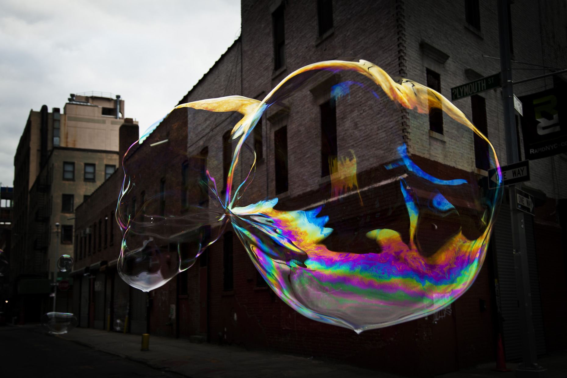 Dumbo Bubbles  1241 v.2